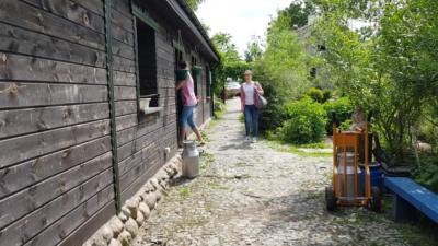 warsztaty Vedic Art Marta Kolarz siedlisko leleuja dom